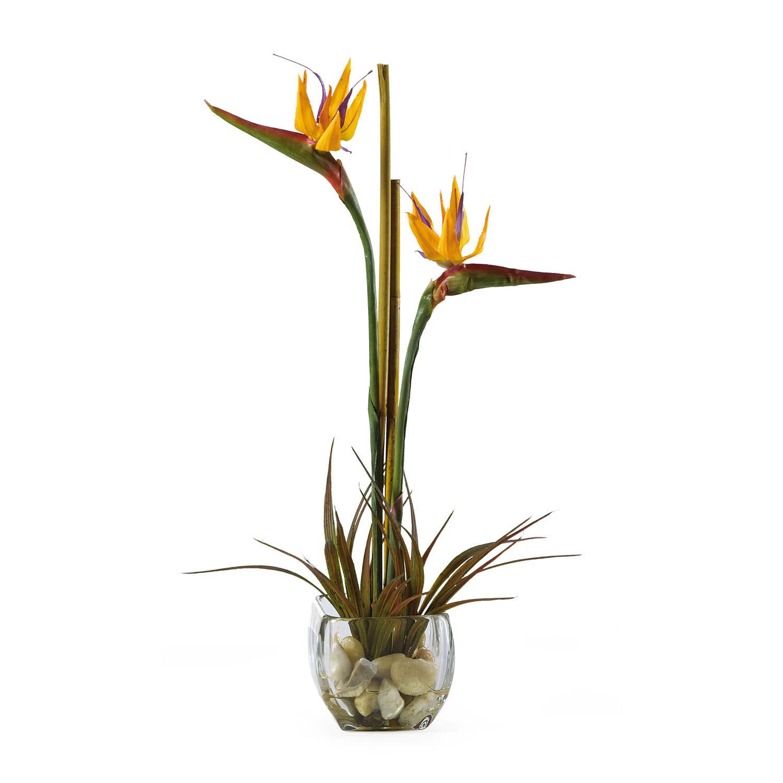 Shop Silk Bird Of Paradise And Anthurium Tropical: Tropical Silk Bird Of Paradise Acrylic Arrangement