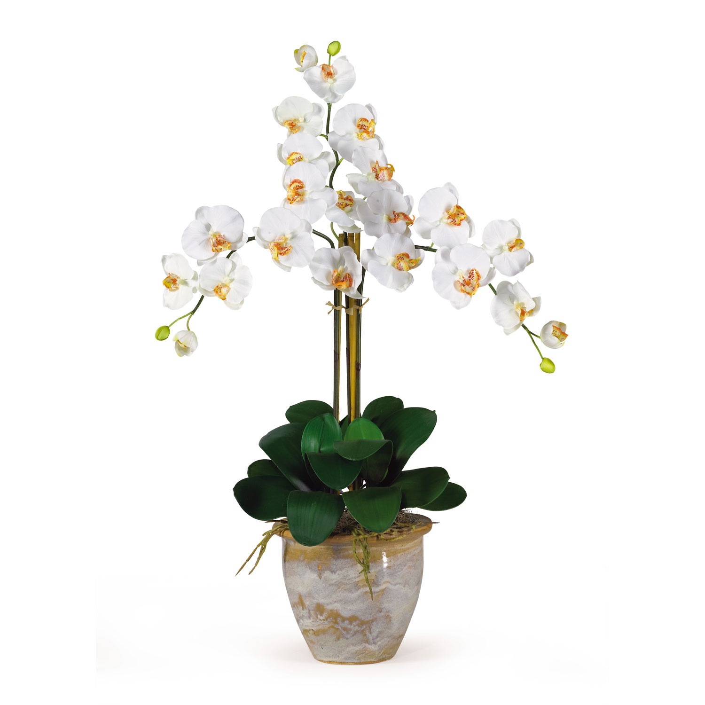 Triple Stem Phalaenopsis Silk Orchid Arrangement 1017