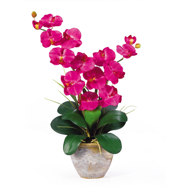 Double stem phalaenopsis silk orchid arrangement 1026 closeup image dhlflorist Gallery