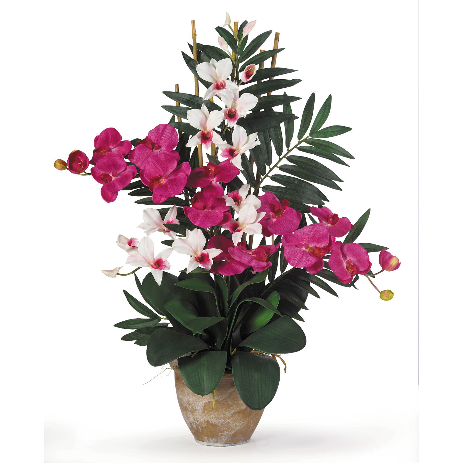 29IN Phalaenopsis Orchid & Dendrobium Orchid Arrangement in Planter Colo