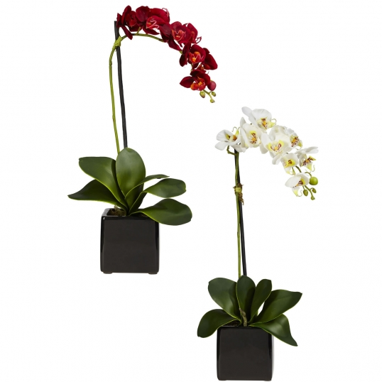 Silk Phalaenopsis Orchids In Black Vase Set Of 2 4757 S2