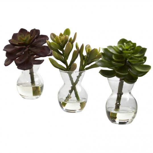 Artificial Succulent Arrangements In Glass Vaseset Of 3 4954 S3