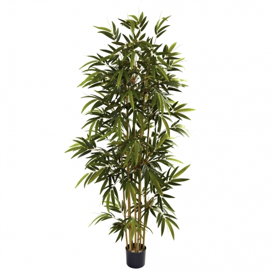 6 foot artificial bamboo tree: potted | 5362