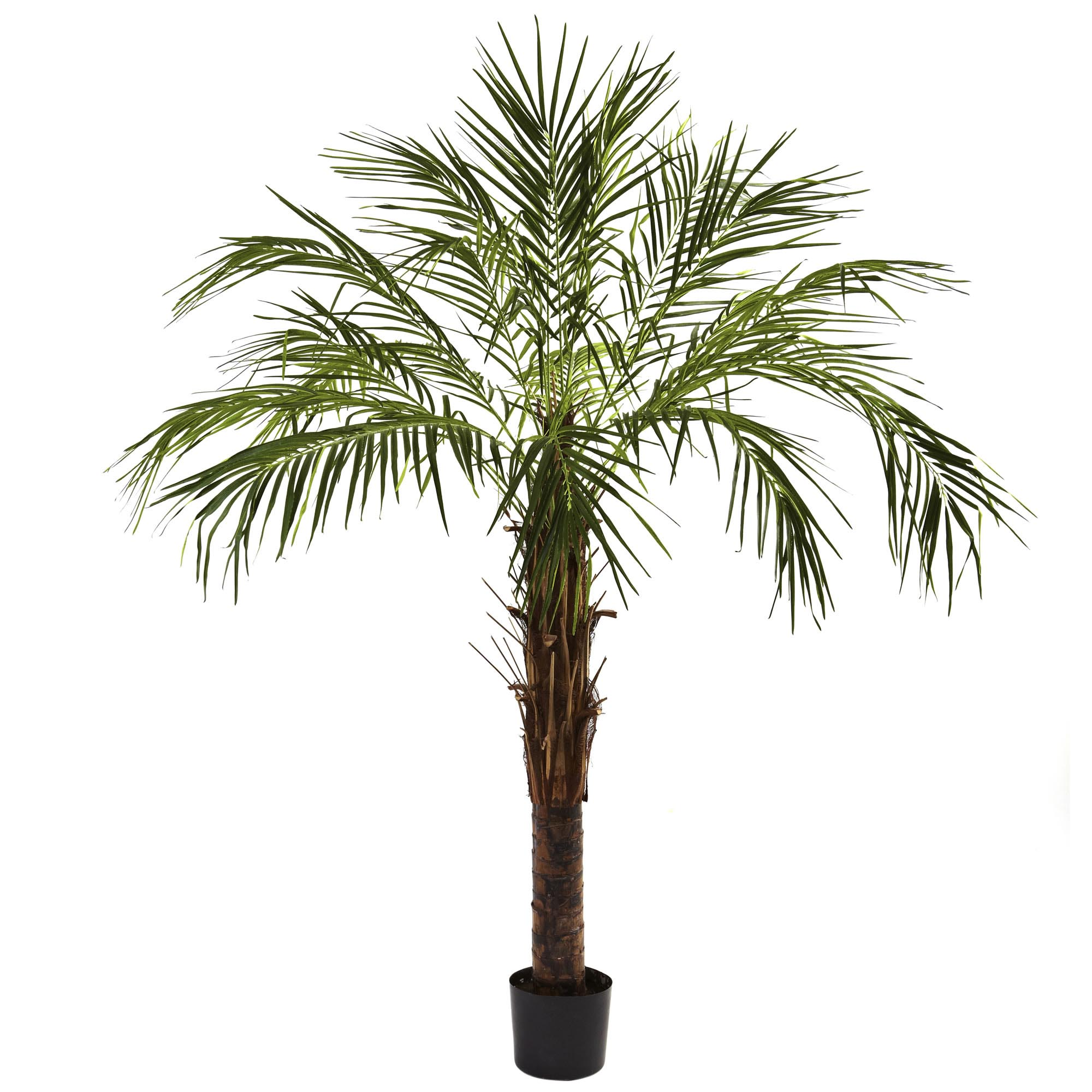 6 foot artificial robellini palm tree potted 5366