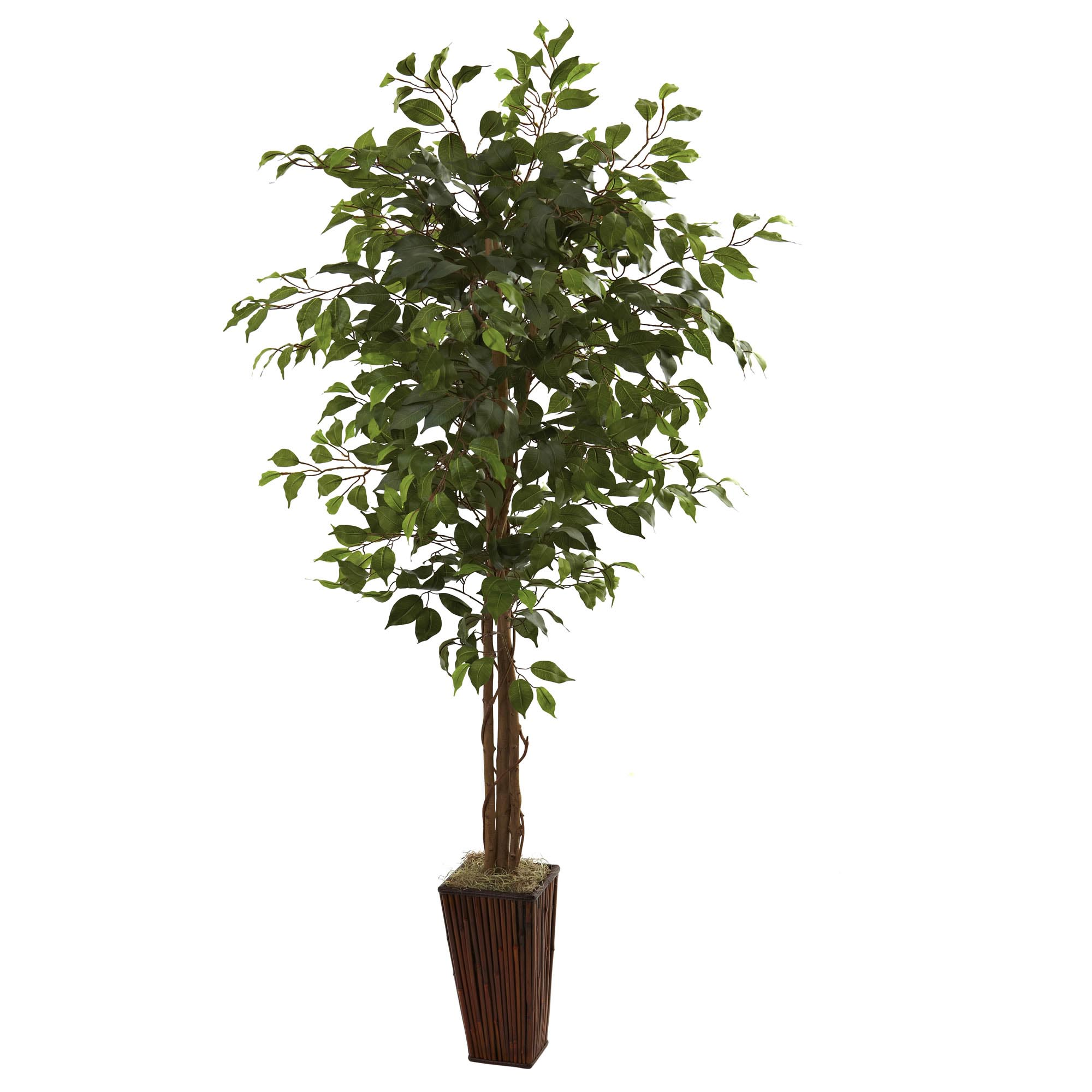 6 foot Artificial Ficus Tree in Bamboo Planter 5931