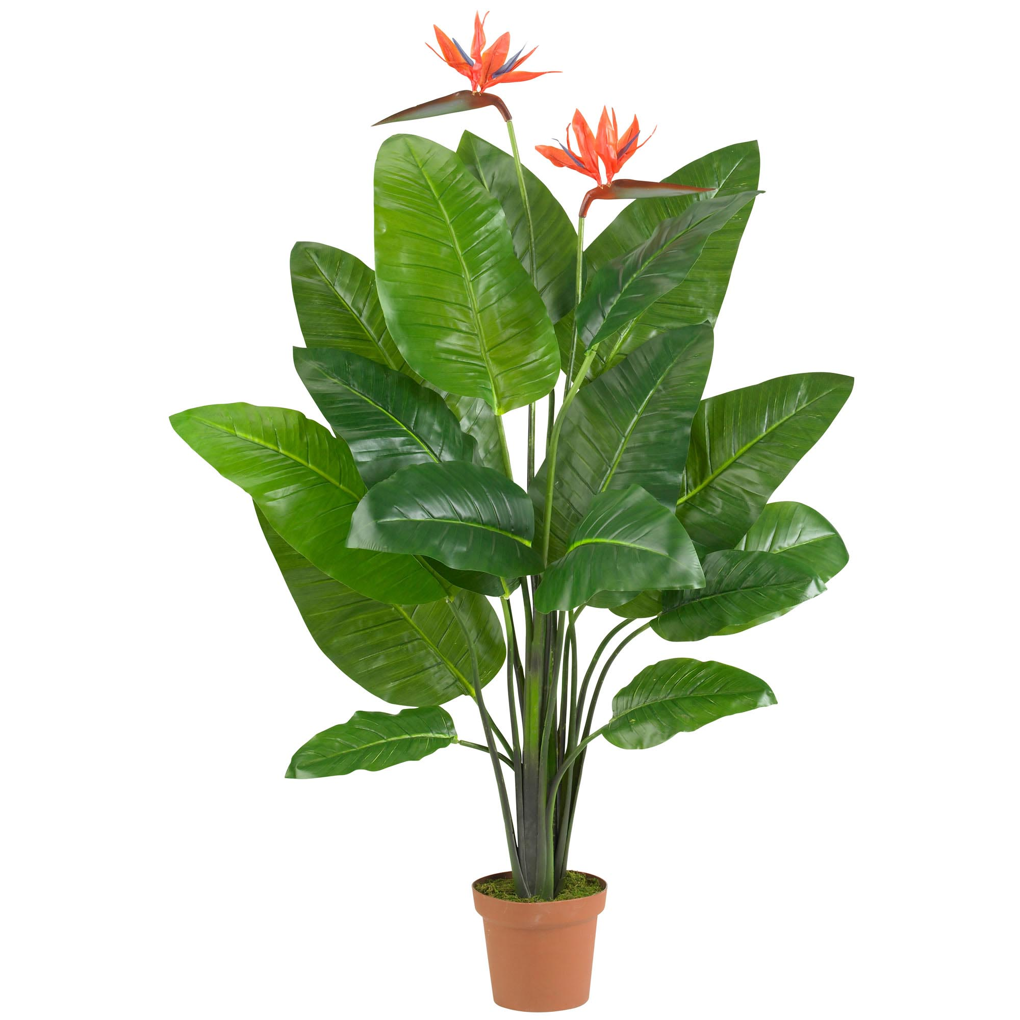 artificial tropical plants | indoor tropical plants | fake