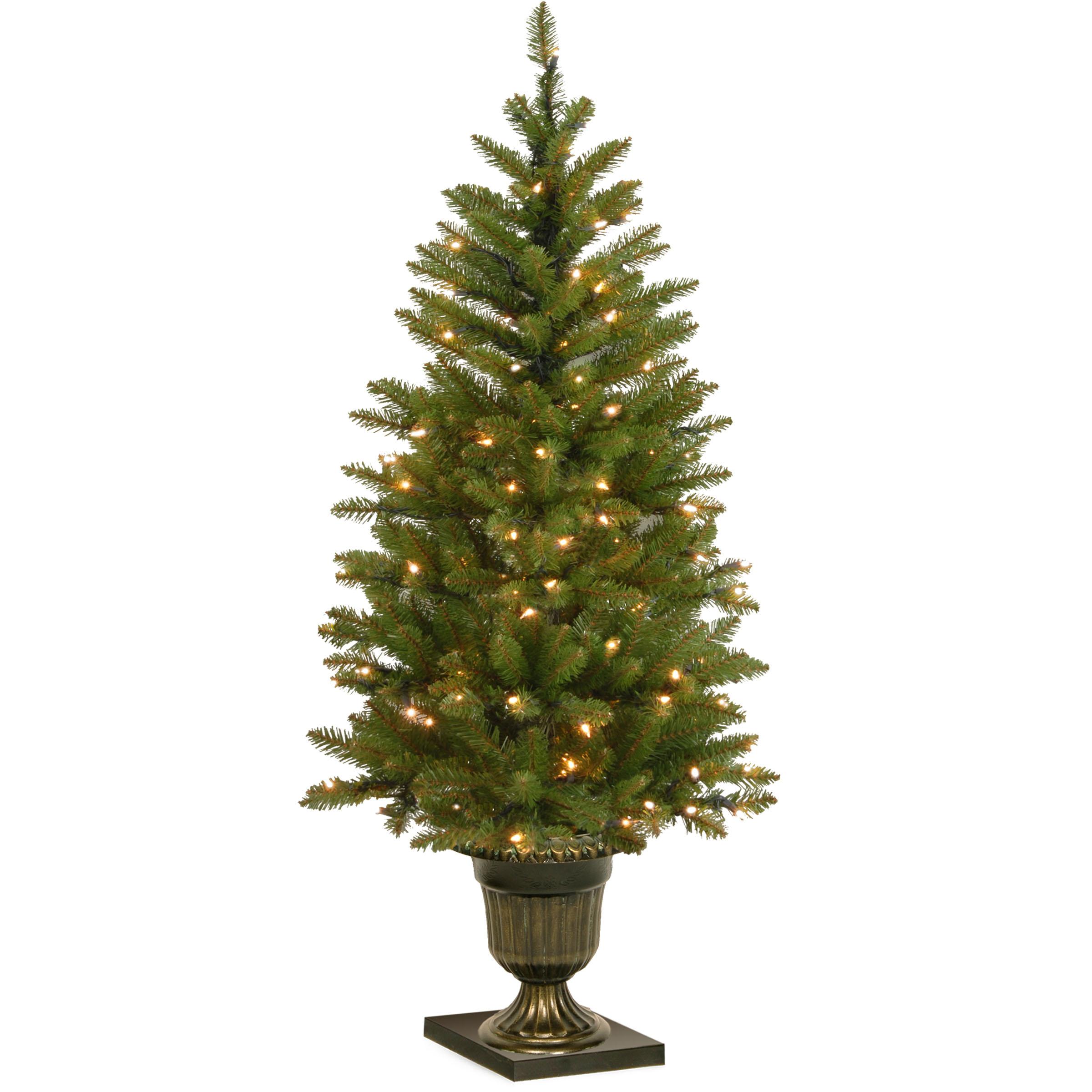 4 Foot Dunhill Fir Entrance Tree In Dark Bronze Urn: Clear Lights