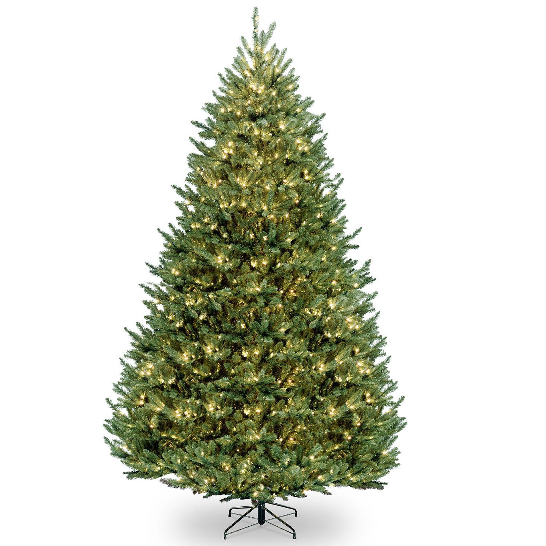 Choose Natural Fraser Medium Fir Christmas Tree Mini Lights 12 2450
