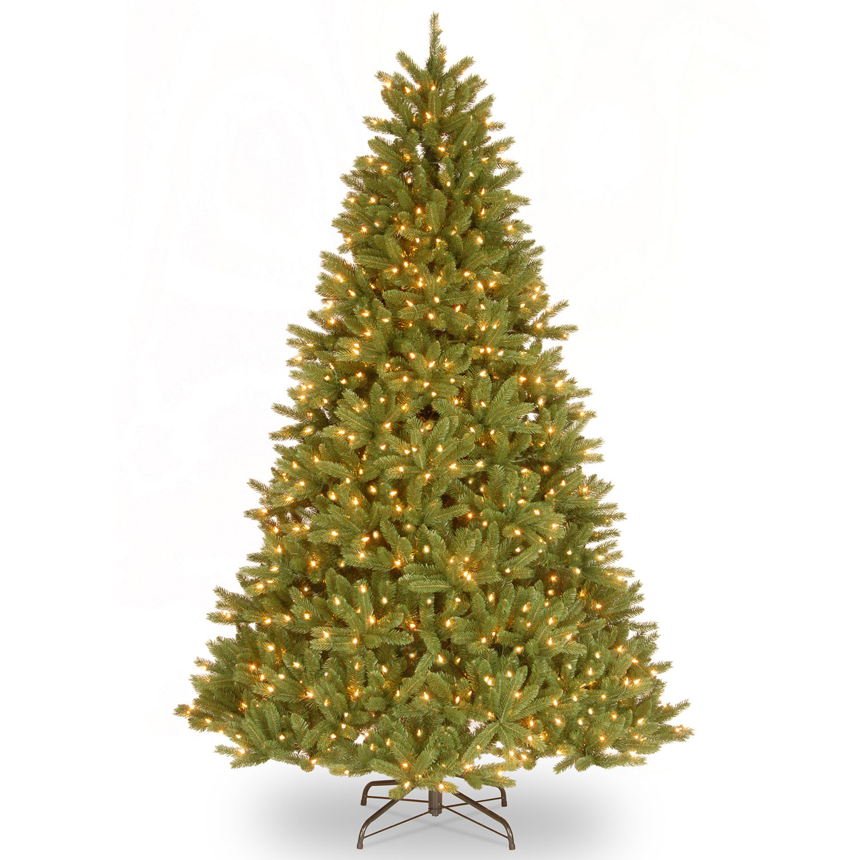 Superb Fir Medium Tree Clear Lights Product Photo