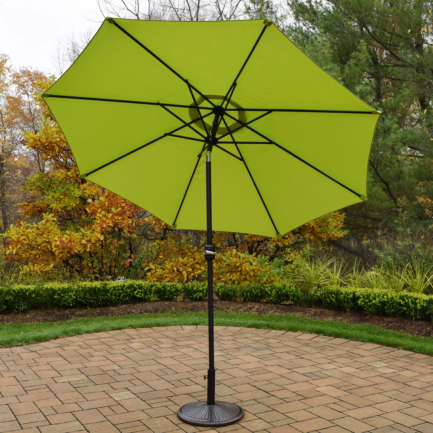 Umbrella | Stand | Green | Black | Foot | No