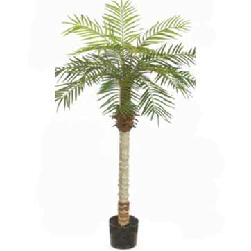 5 Foot Artificial Phoenix Palm