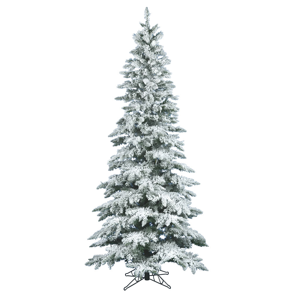 12 Ft Flocked Christmas Tree: 12 Foot Slim Flocked Utica Fir Christmas Tree: Unlit
