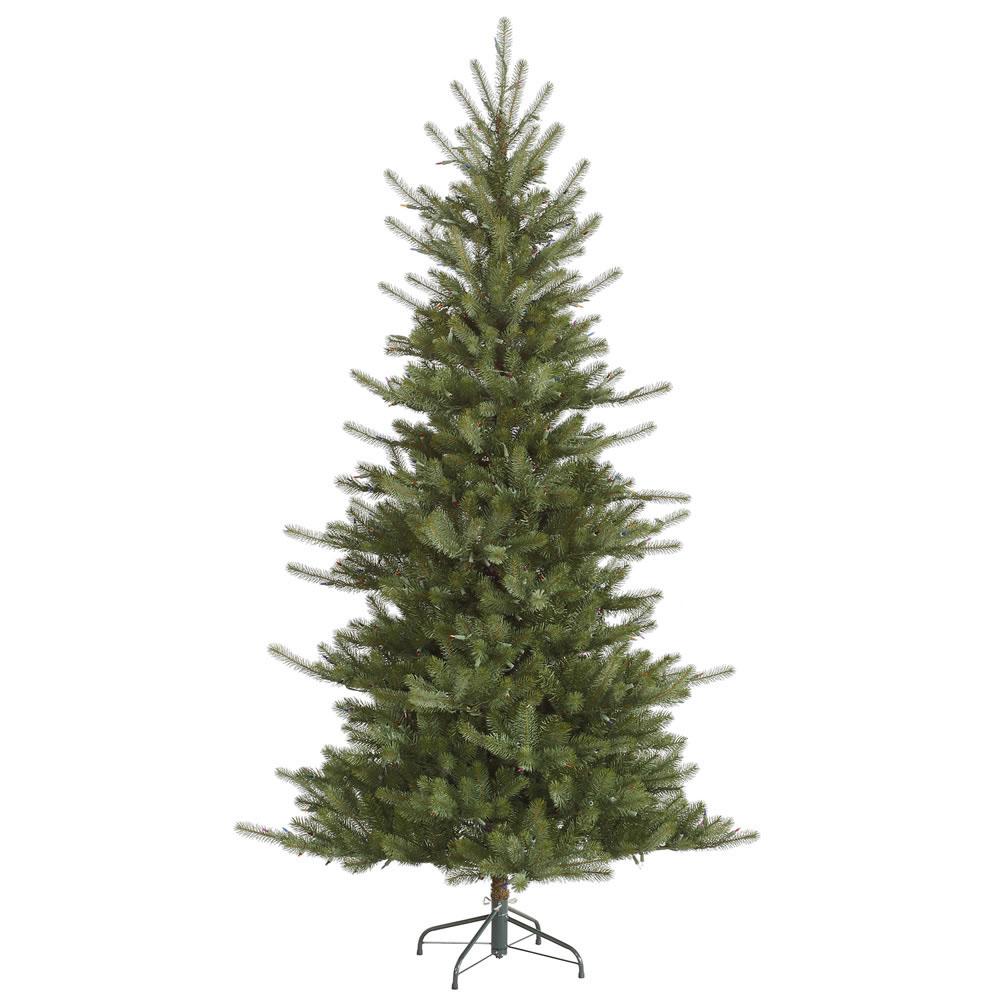 Colorado   Medium   Tree