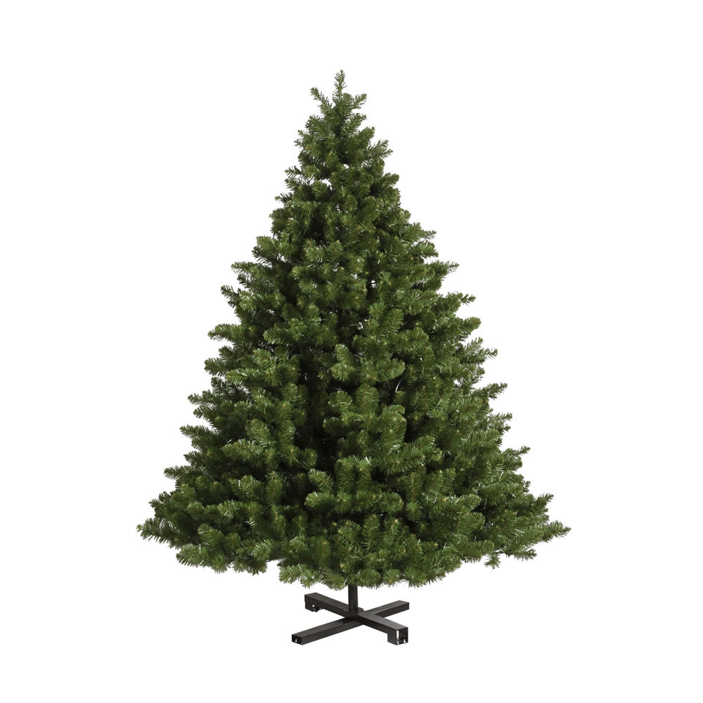 Learn more about Full Grand Teton Tree Product Photo
