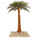 10 foot outdoor uv protected royal palm christmas tree clear lights - Palm Christmas Tree