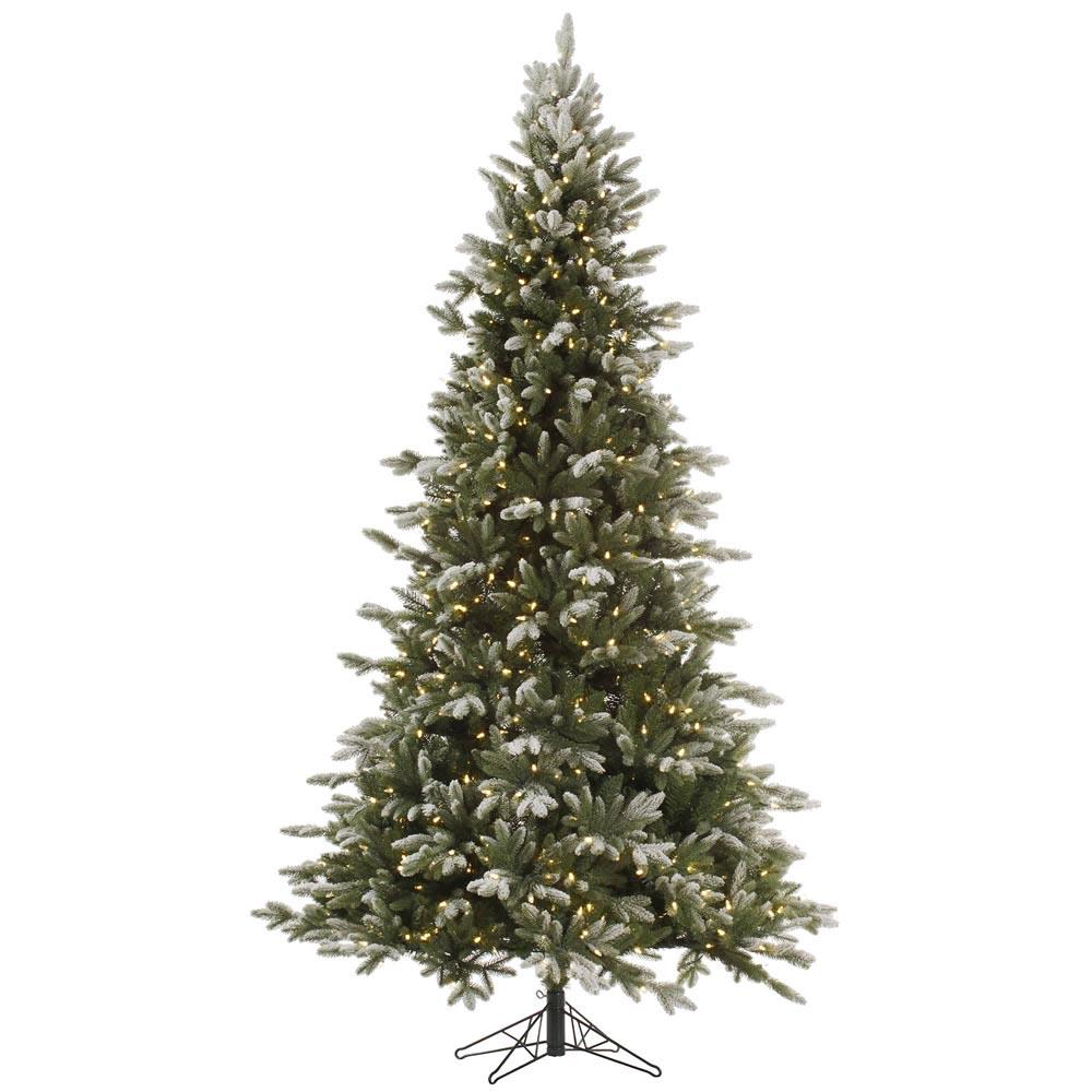 6 5 Foot Frosted Balsam Fir Christmas Tree All Lit Lights
