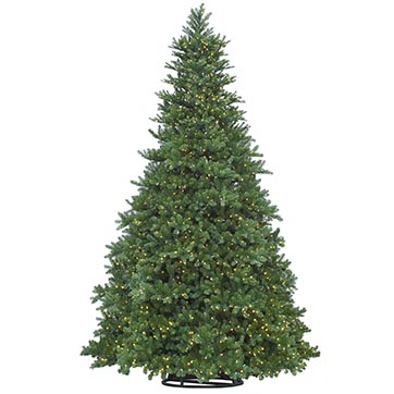 12 foot Commercial Indoor/Outdoor Grand Teton Christmas Tree: LED by Vickerman