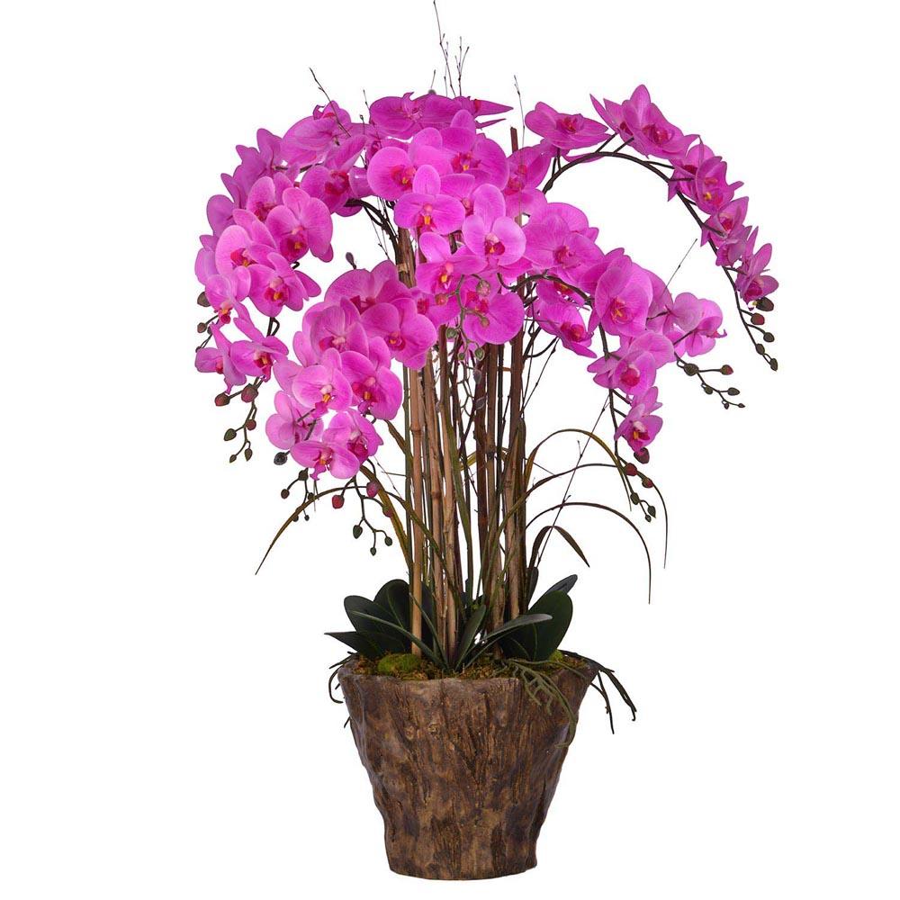 Choose Orchid Arrangement Fiberstone Pot Product Photo