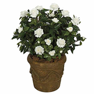 Artificial Outdoor Plants Outdoor Artificial Trees
